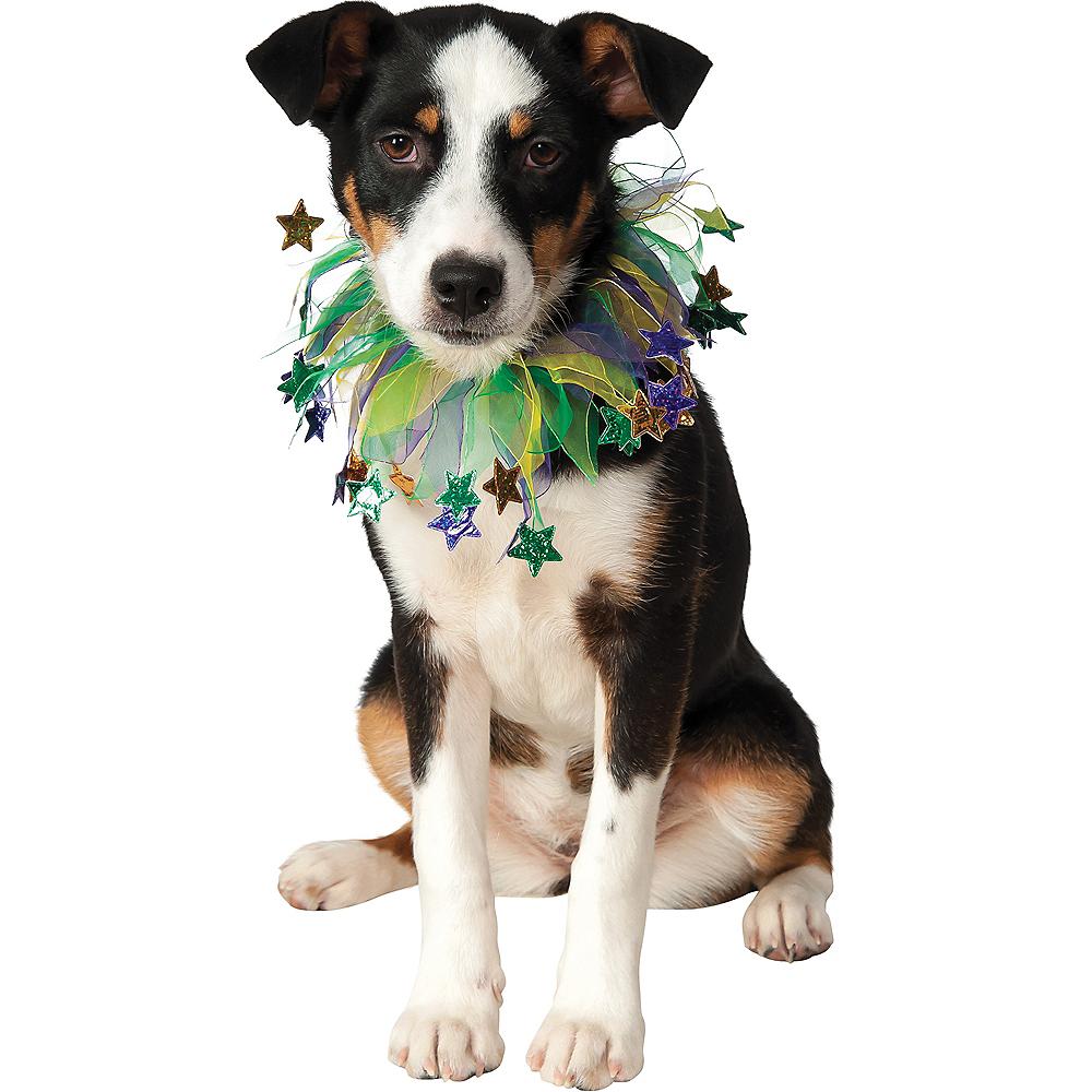 Mardi Gras Star Dog Collar Image #1