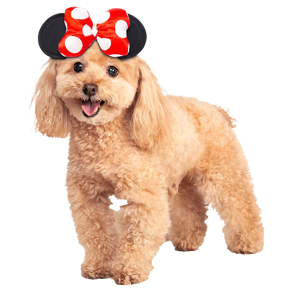 Minnie Mouse Dog Headpiece Image #1
