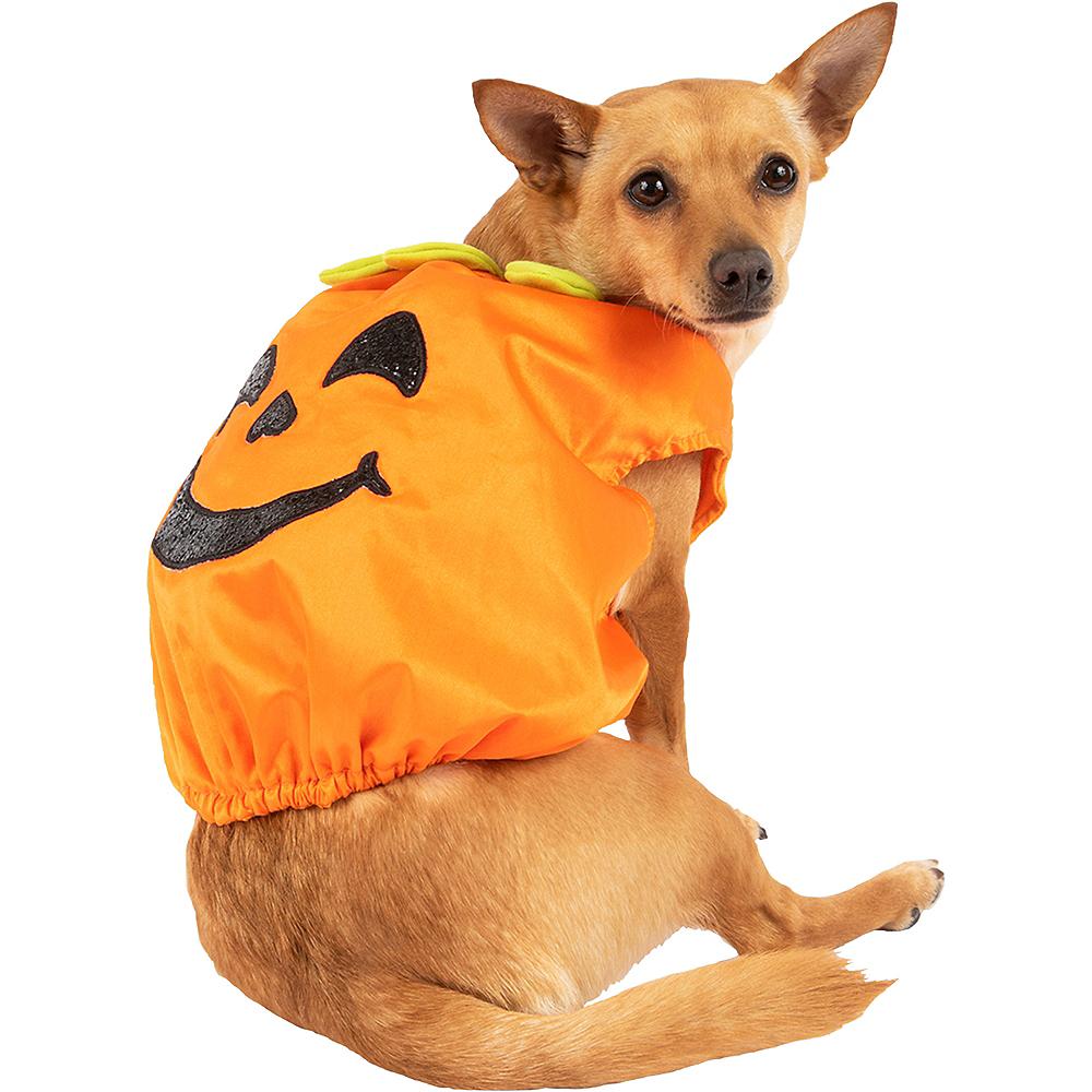 Glitter Pumpkin Dog Costume Image #1