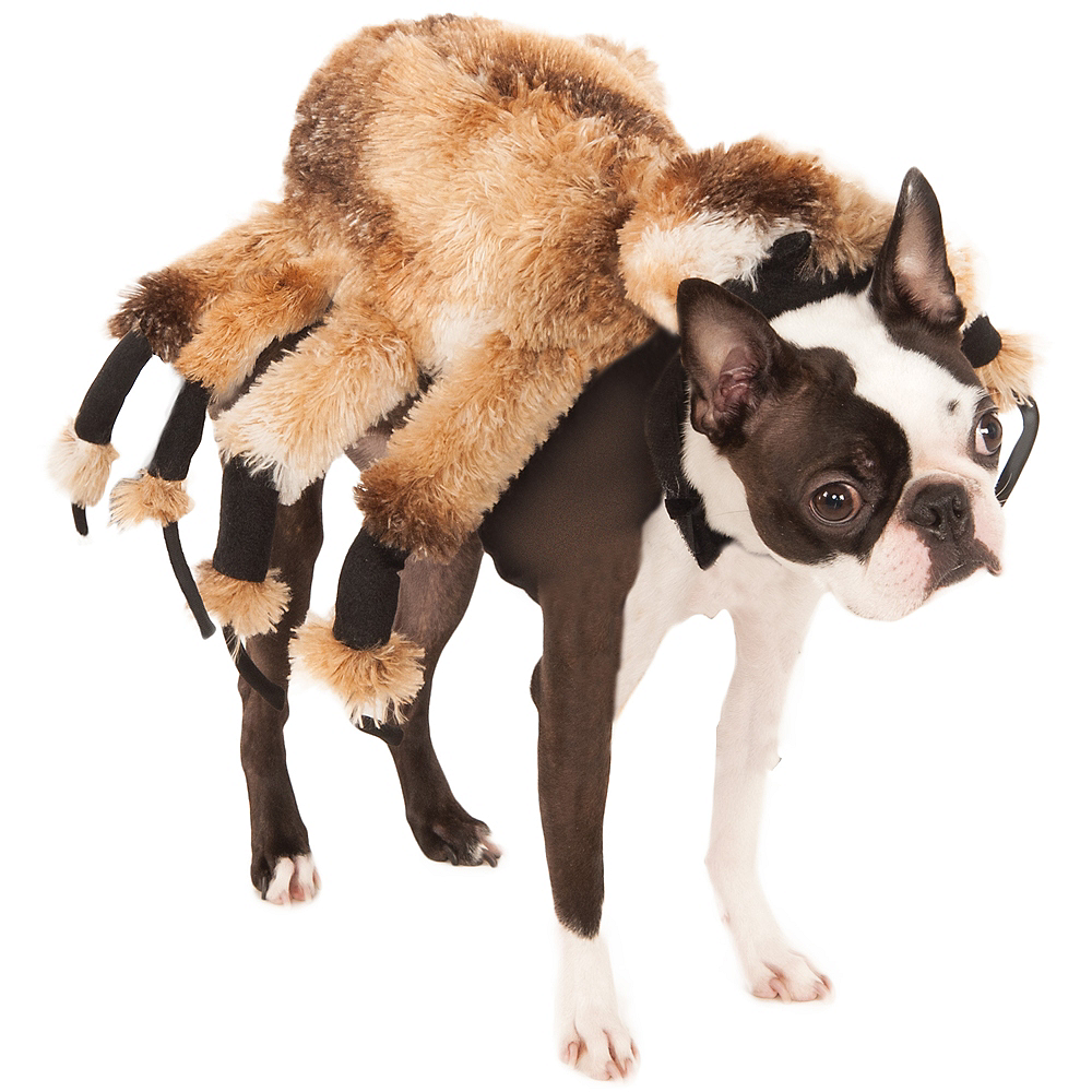 Nav Item for Giant Spider Dog Costume Image #1