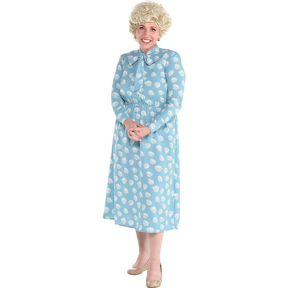 Adult Rose Nylund Dress Image #1