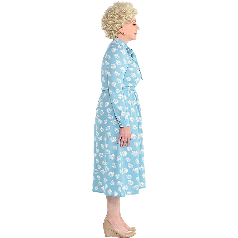 Adult Rose Nylund Dress Image #2