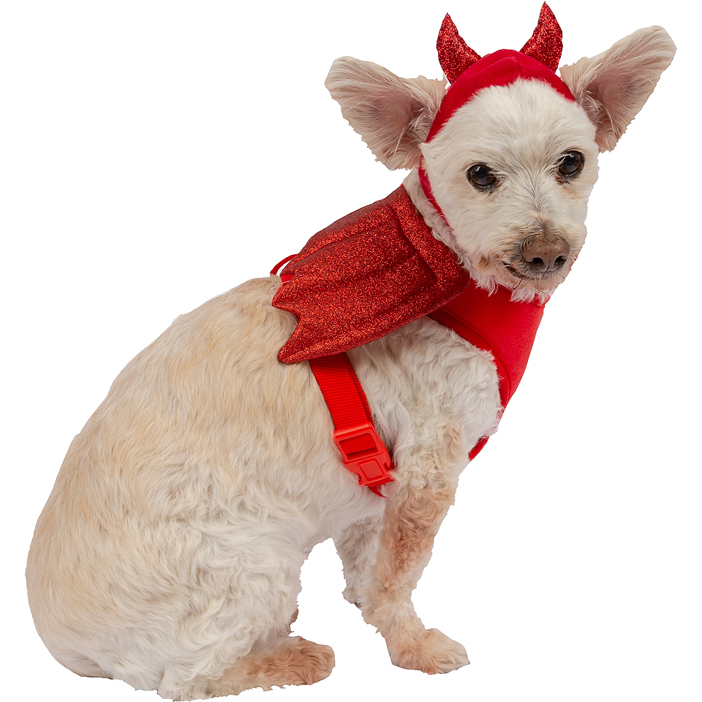 Red Winged Devil Dog Harness Set Image #1