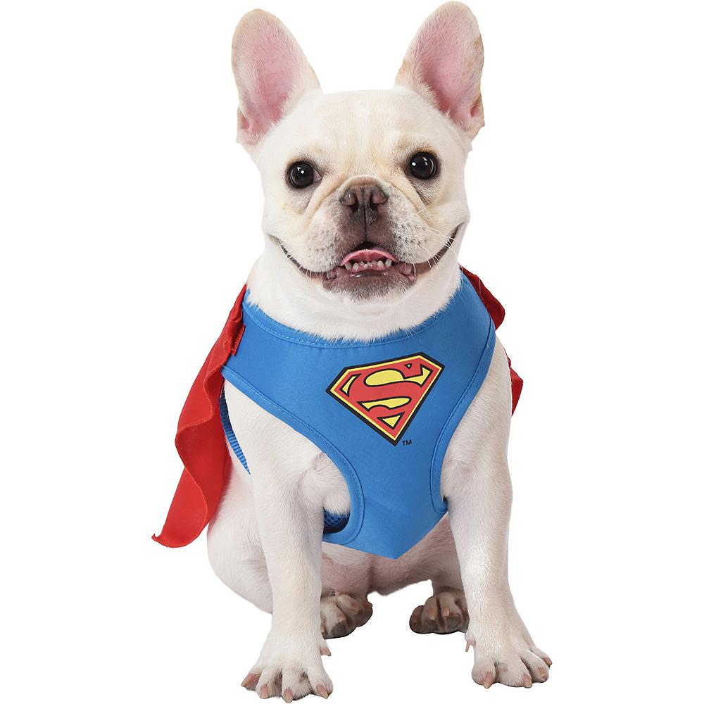 Superman Dog Harness - DC Comics Image #1
