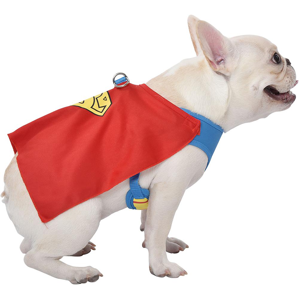 Superman Dog Harness - DC Comics Image #3