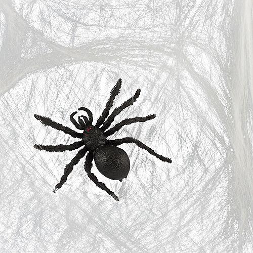 Big Spider & Web Image #1