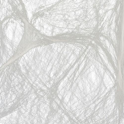 Big Spider & Web Image #2