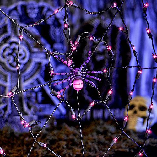 Spider Web Lights Image #2