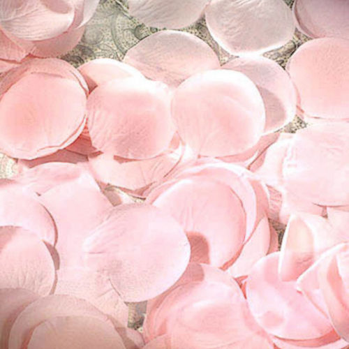 Pink Rose Petals 300ct Image #1
