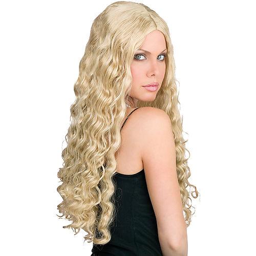 Long & Luscious Blond Wig Image #1