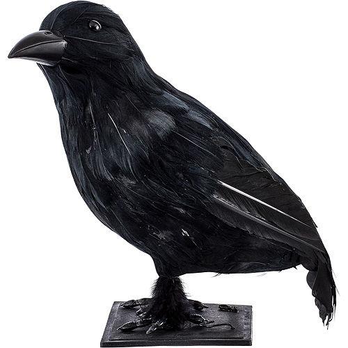 Black Crow Image #2