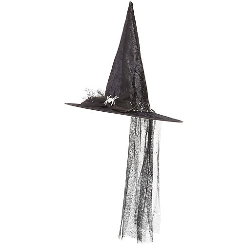 Fancy Witch Hat Image #1