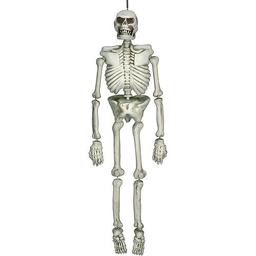 Hanging Plastic Skeleton, 5ft Image #1
