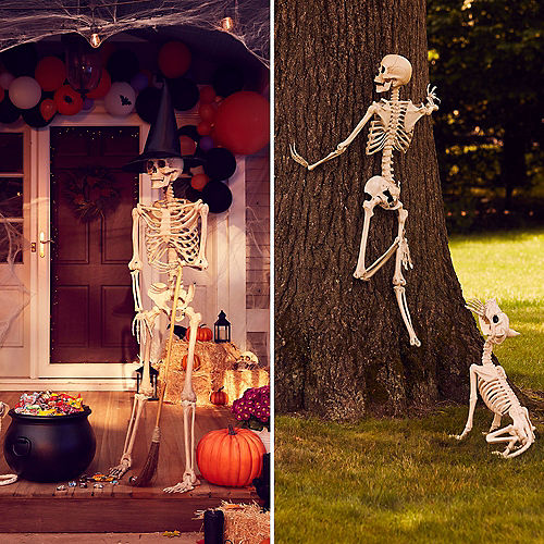 Life-Size Poseable Skeleton, 5ft Image #6