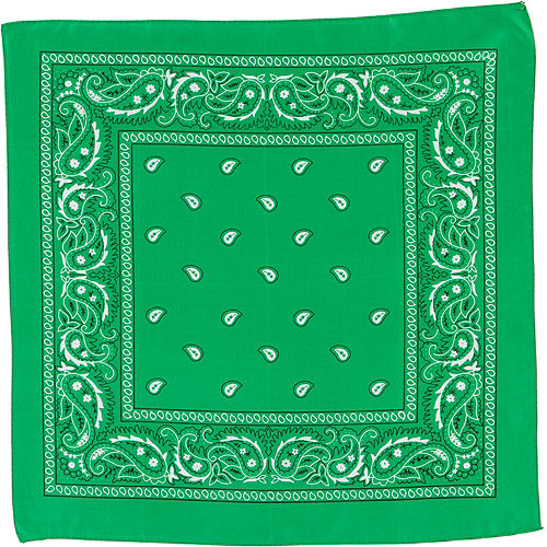 Green Paisley Bandana, 20in x 20in Image #2