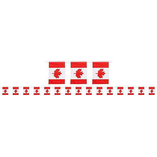 Canadian Flag Pennant Banner Image #1