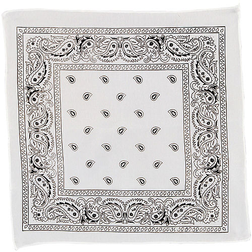 Nav Item for White Paisley Bandana, 20in x 20in Image #2