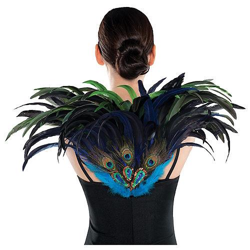 Fan Feather Peacock Wings Image #1