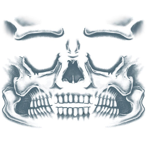 Skull Face Tattoo Kit - Day of the Dead- Tinsley Transfers Image #2