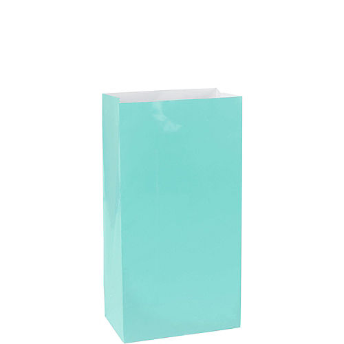 Medium Robin's Egg Blue Paper Treat Bags 12ct Image #1