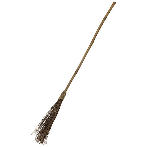 Classic Witch Broom Image #1