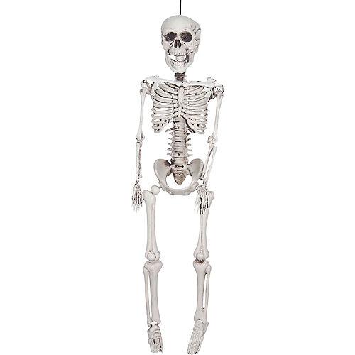Realistic Hanging Skeleton Image #1