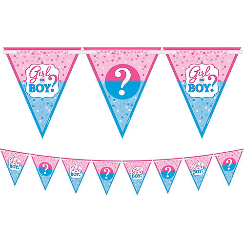 Girl or Boy Premium Gender Reveal Party Kit for 32 Guests Image #6