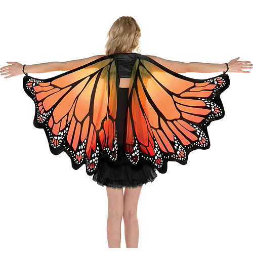 Adult Monarch Butterfly Wings Image #1