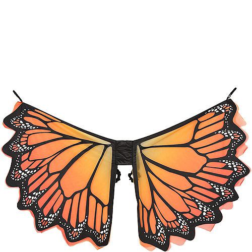 Adult Monarch Butterfly Wings Image #2