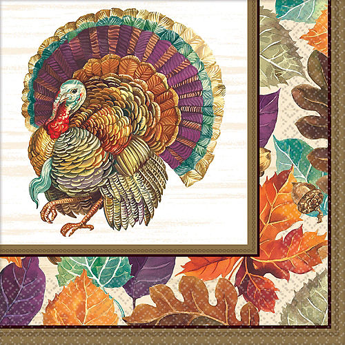 Traditional Thanksgiving Dinner Napkins 16ct Image #1