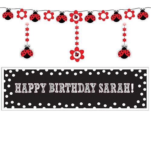 Fancy Ladybug 1st Birthday Decorating Kit Image #1