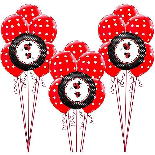 Fancy Ladybug Balloon Kit Image #1