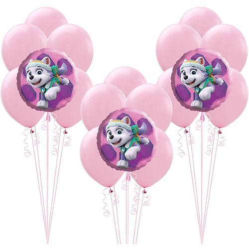 Pink PAW Patrol Balloon Kit Image #1