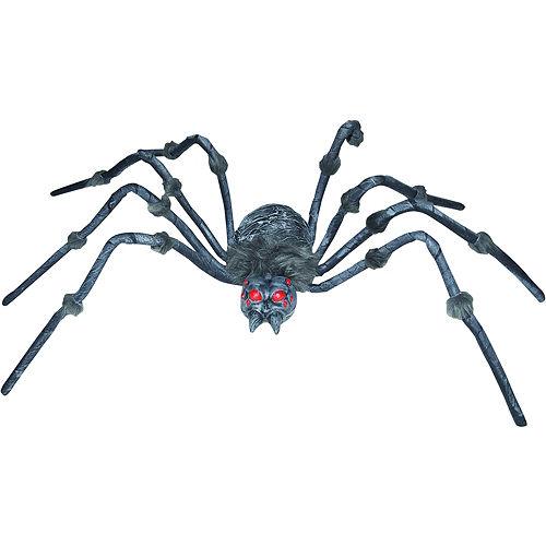 Demented Tarantula Image #1