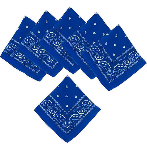 Blue Paisley Bandanas, 20in x 20in, 10ct Image #1
