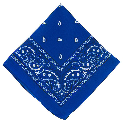 Blue Paisley Bandanas, 20in x 20in, 10ct Image #2