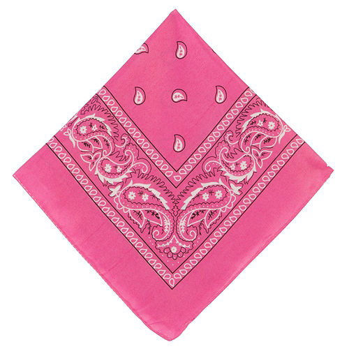Pink Paisley Bandanas, 20in x 20in, 10ct Image #2