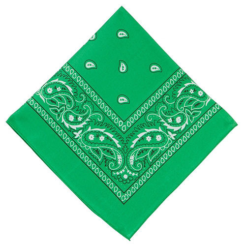 Green Paisley Bandanas, 20in x 20in, 10ct Image #2