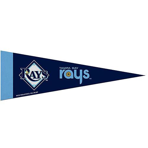 Small Tampa Bay Rays Pennant Flag Image #1