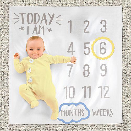 White & Gray Baby Milestone Photo Blanket Image #1
