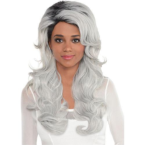 Luscious Gray Wig Image #1