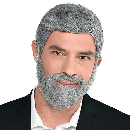 Short Gray Full-Face Beard Image #1