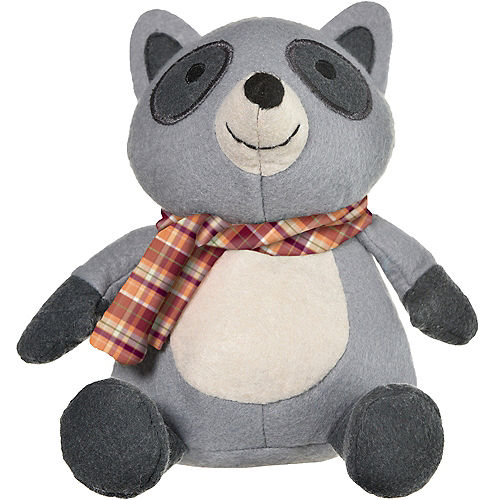 Roly-Poly Raccoon Image #1