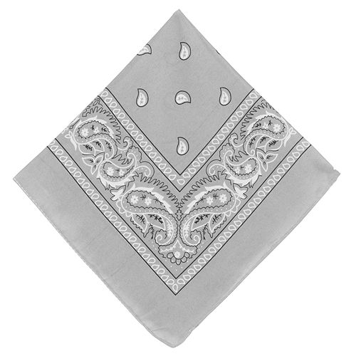 Silver Paisley Bandanas, 20in x 20in, 10ct Image #2