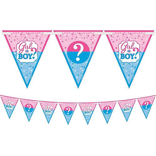 Girl or Boy Gender Reveal Car Decorating Kit Image #3
