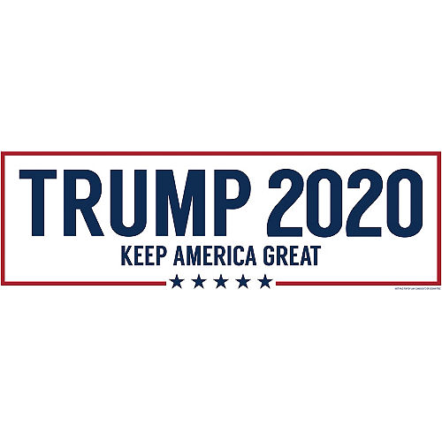 Red, White & Blue Trump 2020 Election Horizontal Banner Image #1