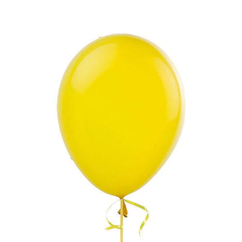 Premium Rainbow & Silver 30 Balloon Bouquet, 14pc Image #9