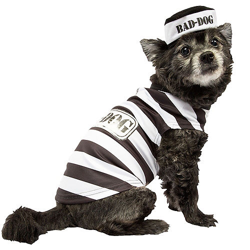 Adult Stop Traffic Sexy Cop & Bad Dog Prisoner Doggy & Me Costumes Image #2