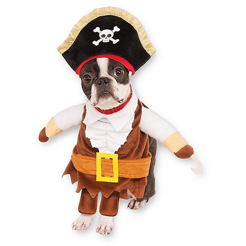 Adult Ahoy Matey Pirate & Walking Pirate Doggy & Me Costumes Image #3