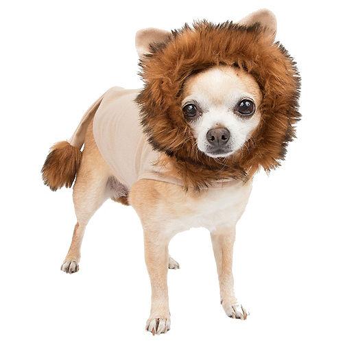 Adult Ringmaster & Lion Doggy & Me Costumes Image #2